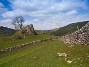 Stone wall hills and green pastures, Derbyshire by Assaf Frank