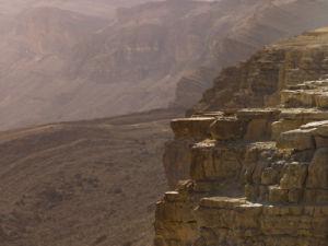 Desert Mountain, Ramon Crater, Israel by Assaf Frank