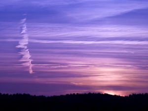 Sunset by Assaf Frank