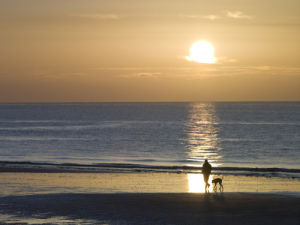 Man walking his dog on the beach at sunrise, Littlehampton England by Assaf Frank