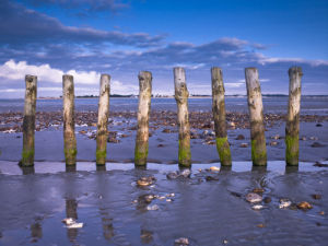 Groynes at ast head beach, West Sussex coast by Assaf Frank