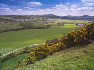 Green fields, Derbyshire by Assaf Frank