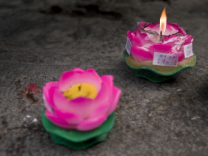Close-up of lotus candle at jade Buddha temple, Shanghai by Assaf Frank