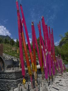Close-up of incense sticks, Shennongjia National Park by Assaf Frank