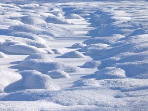 Snow Close-up by Assaf Frank