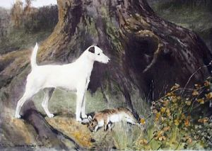 Dame Fortune (Restrike Etching) by Arthur Wardle