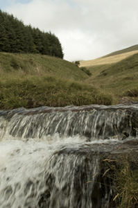 Stream close-up, Wales by Assaf Frank