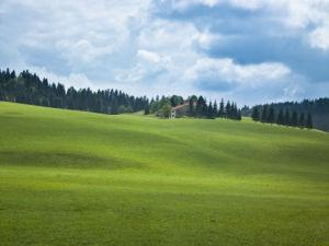 Rolling landscape and grassland (II) by Assaf Frank