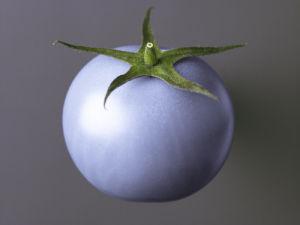 Tomato by Assaf Frank