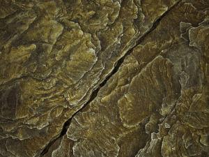 Frosty rock surface close-up by Assaf Frank