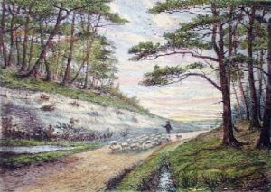 Lane Near The New Forest (Restrike Etching) by William Burgess