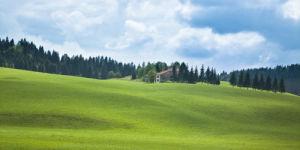 Rolling landscape and grass land by Assaf Frank