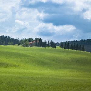 Rolling landscape and grassland (I) by Assaf Frank