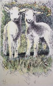 Lambs (Restrike Etching) by Anonymous
