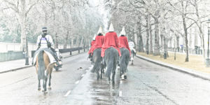 Household Cavalry Buckingham Palace by Assaf Frank