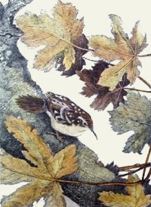 Tree Creeper (Restrike Etching) by Winifred Austen
