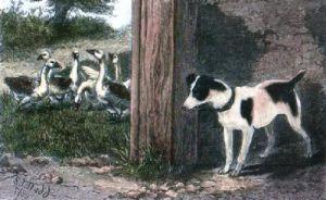 In Ambush (Restrike Etching) by S.T. Dadd