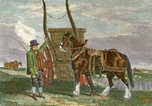 Cart Horse (Restrike Etching) by Benjamin Marshall