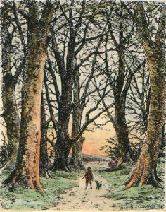 Autumn (Restrike Etching) by Frederick Albert Slocombe