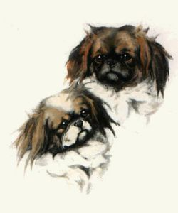 Pekinese Twins (Restrike Etching) by Anonymous