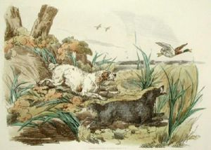 Setters Chasing a Mallard (Restrike Etching) by Anonymous