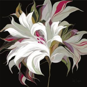 Lily Xx by Sally Scaffardi