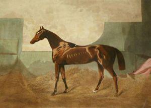 Gladiateur (Restrike Etching) by Sir Edwin Henry Landseer
