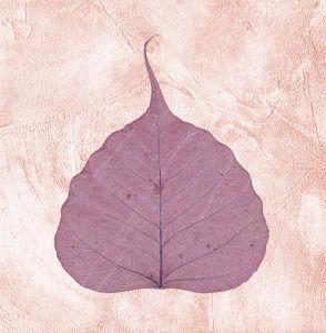Purple Leaf II by Erin Rafferty
