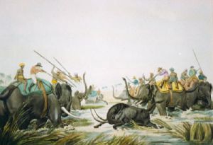 Hunting an Old Buttalo (Restrike Etching) by Samuel Howitt