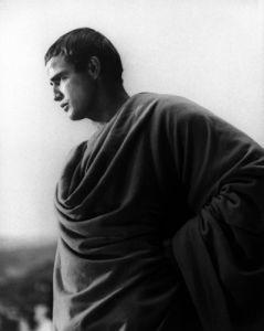 Marlon Brando as Julius Caesar (II) by Celebrity Image
