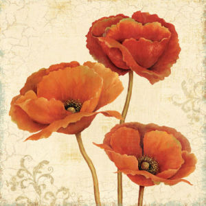 Poppy Bouquet I by Daphne Brissonnet