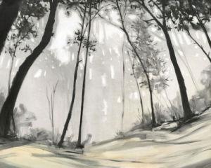 Black Forest by Seth Garrett