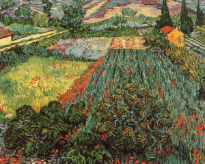 Field of Poppies, Saint-Remy, c. 1889 by Vincent Van Gogh