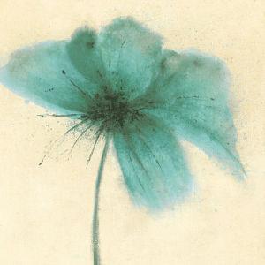 Floral Burst III by Emma Forrester