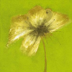 Floral Burst VI by Emma Forrester