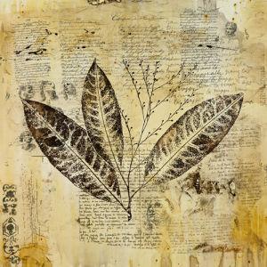 Botanical Sketchbook I by Carney
