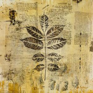 Botanical Sketchbook II by Carney