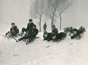 Children sledging, 1955 by Mirrorpix
