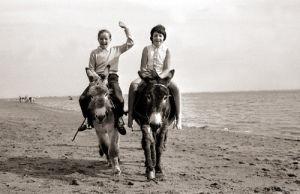 Donkey rides, Exmouth 1962 by Mirrorpix
