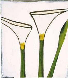 Arum, 2003 by Nicolas Le Beuan Benic
