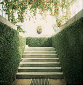 Serres 11 by Alexandre Bibaut