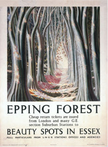 Epping Forest - Beauty Spots in Essex by National Railway Museum