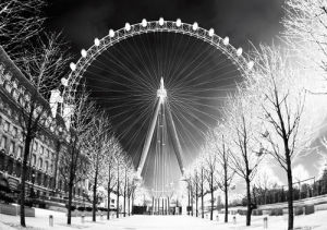 Wheel by Panorama London