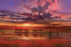 African Sunset by Jonathan Sanders