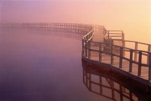 Boardwalk, Canada by Anonymous