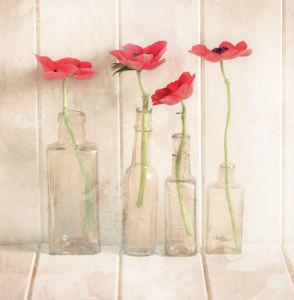 Anemones In Bottles by Ian Winstanley