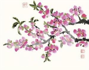 Pink Flowers by Simon Zen