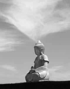 Buddha by Hakan Strand