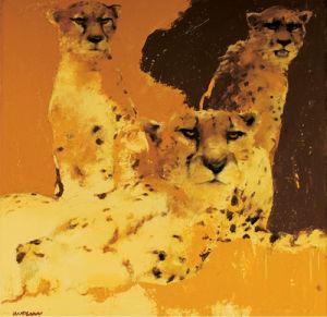 Cheetahs II by Wil Van Der Laan