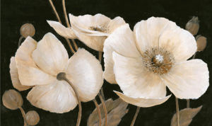 Sepia Poppies by Peter McGowan